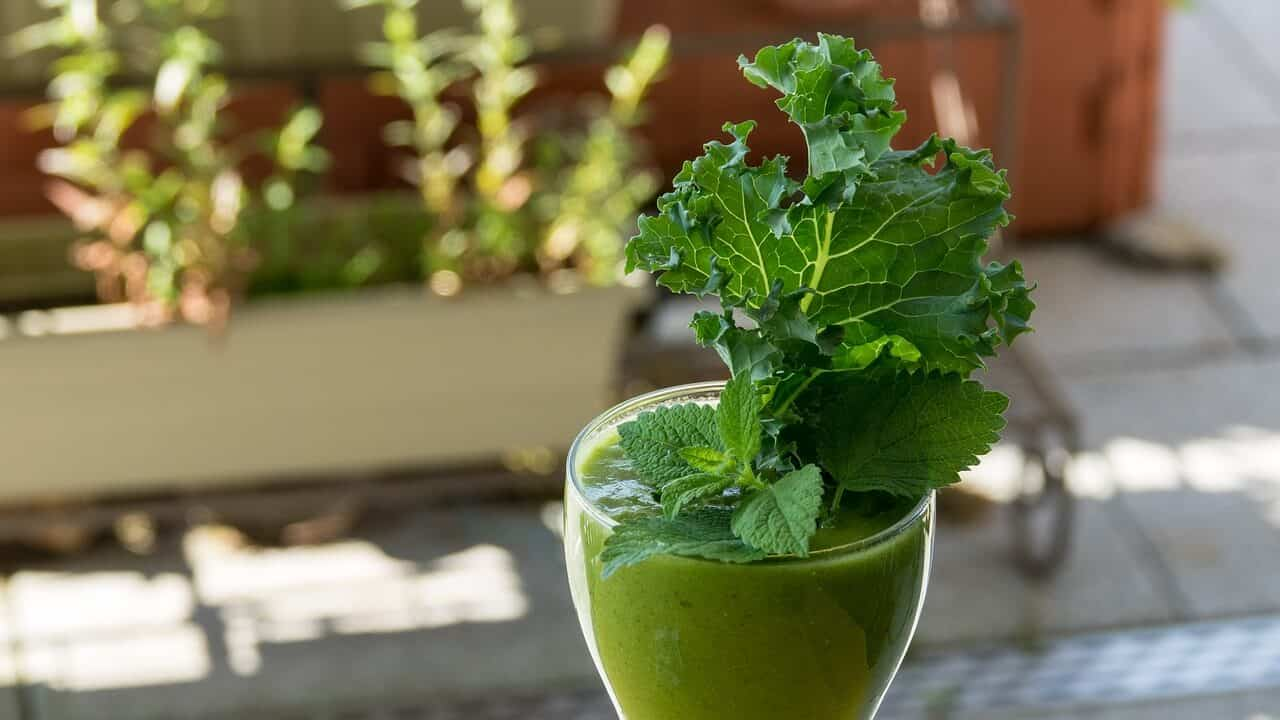 Avocado and Kale Smoothie
